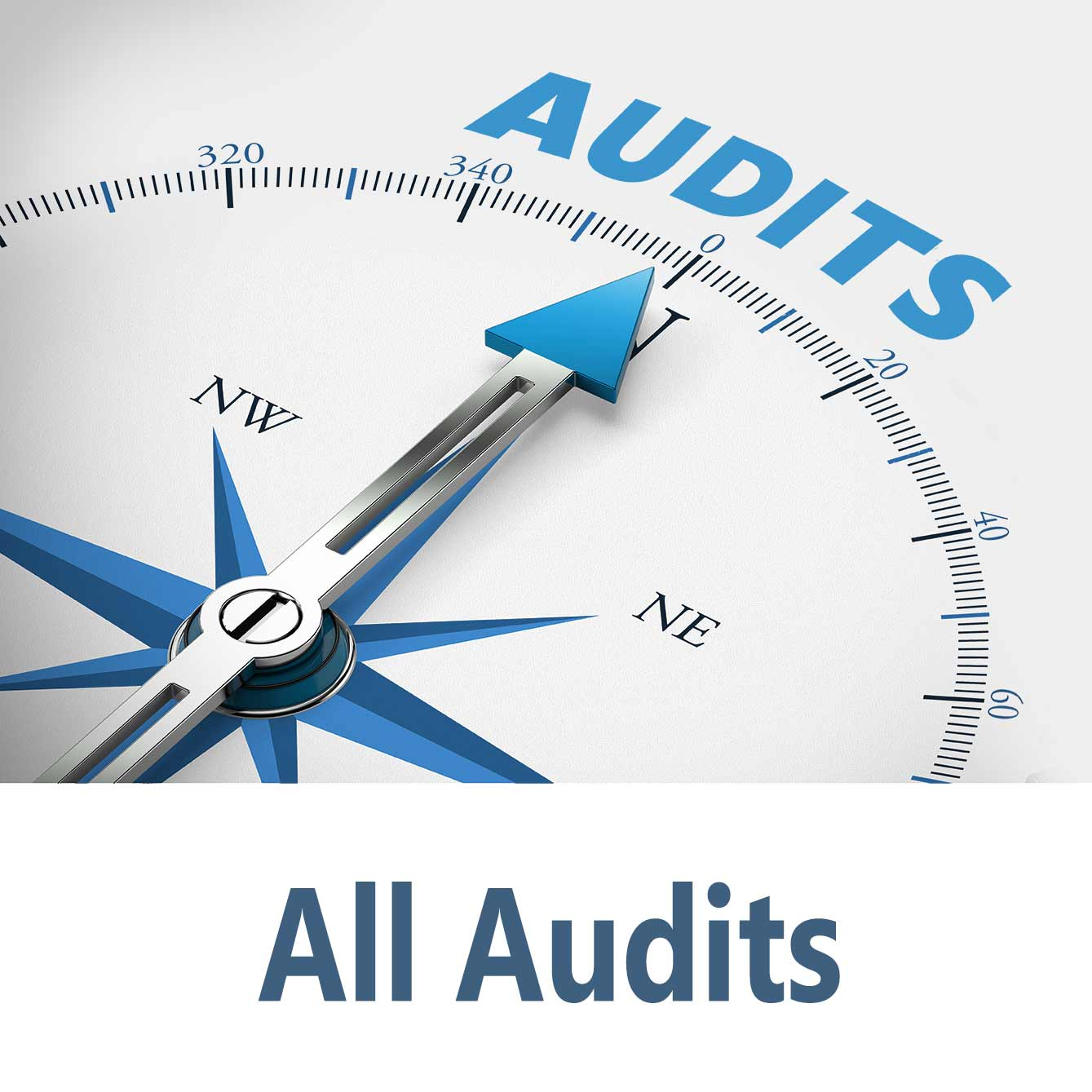 Open all audits