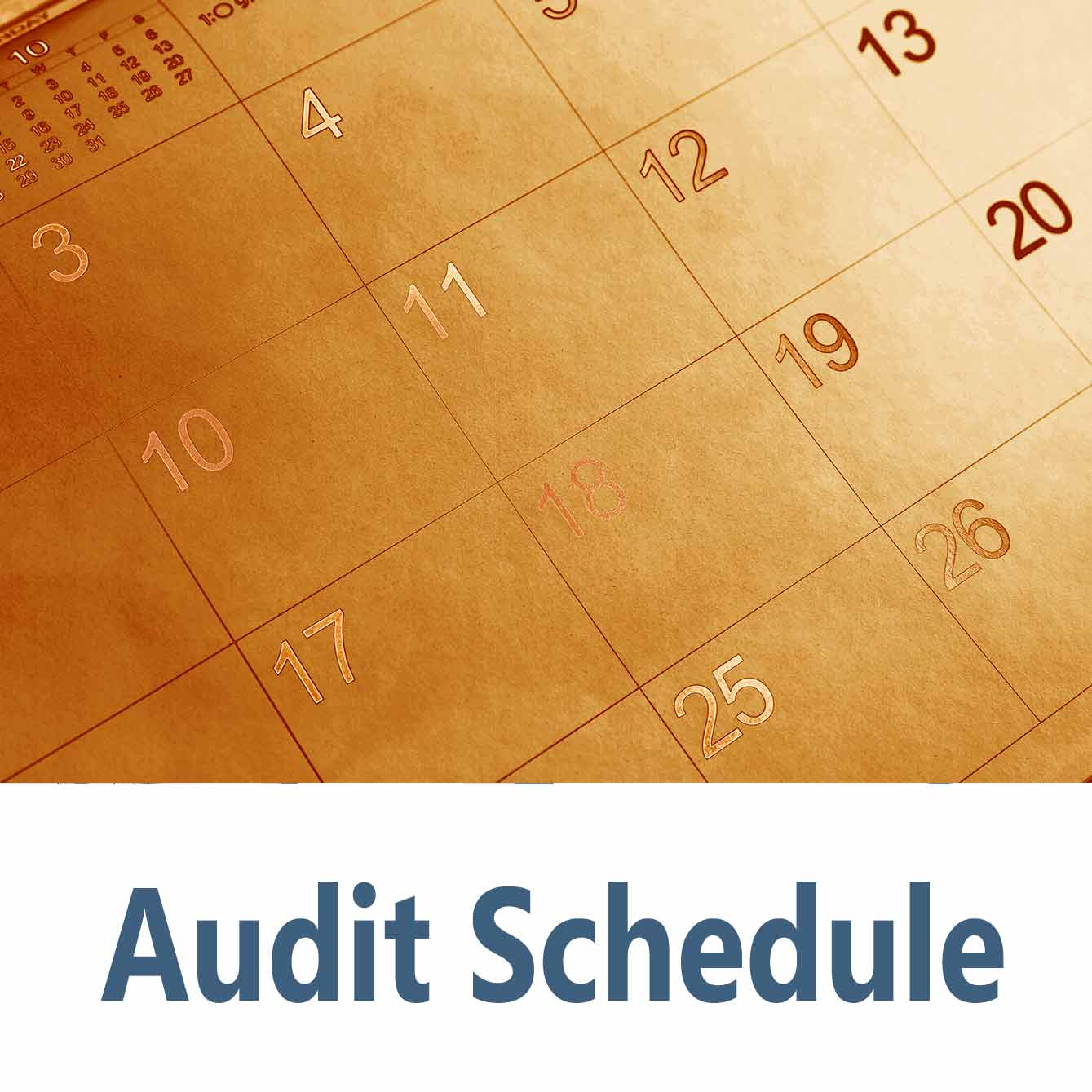 Audit schedule