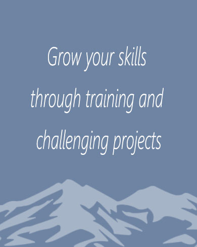 Grow your skill through training and challenging projects